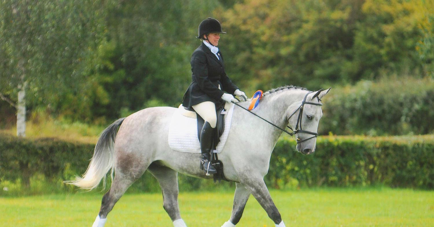 Dressage to Music